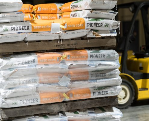 Seed Storage in Warehouse